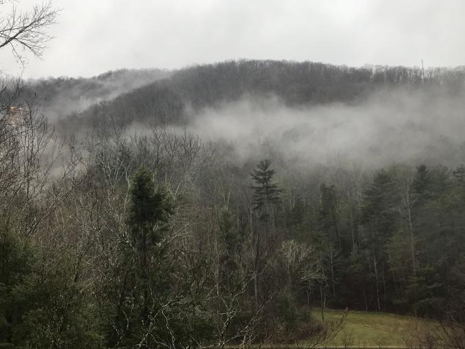 Cloudsintrees.jpg